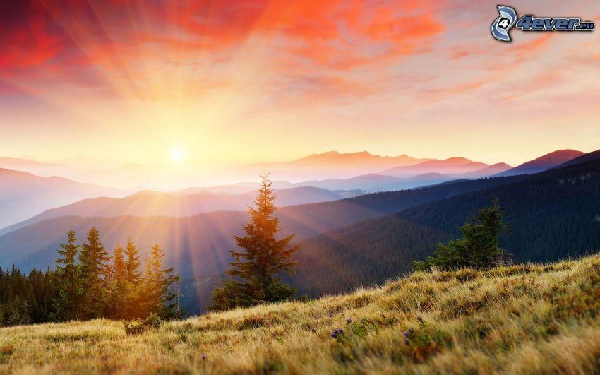solnedgång över berg, solstrålar, äng, träd, orange himmel