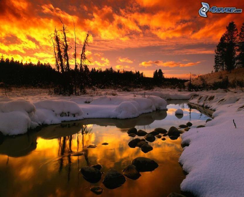 solnedgång på vintern, orangea moln, bäck, skog, Alberta