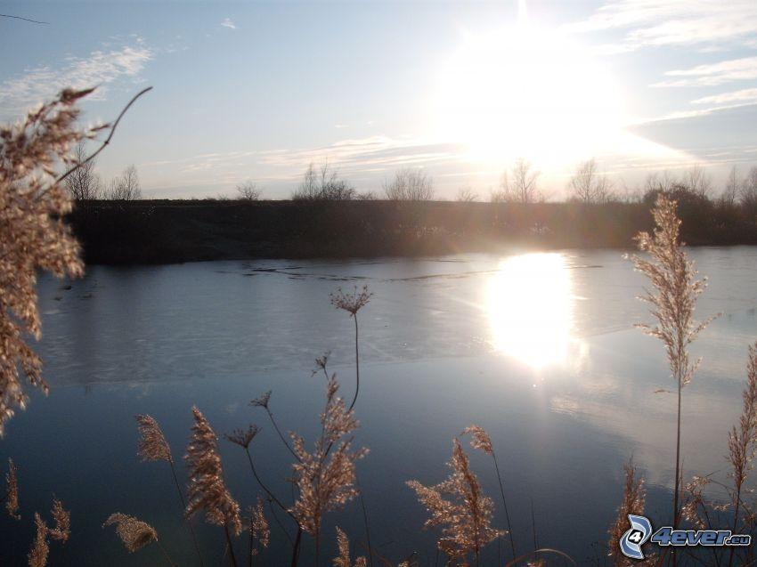 soluppgång, himmel, vatten
