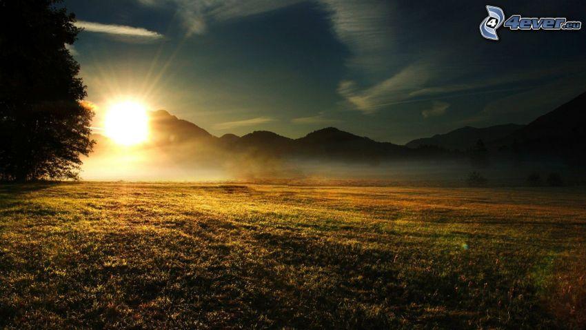 soluppgång, kullar, äng