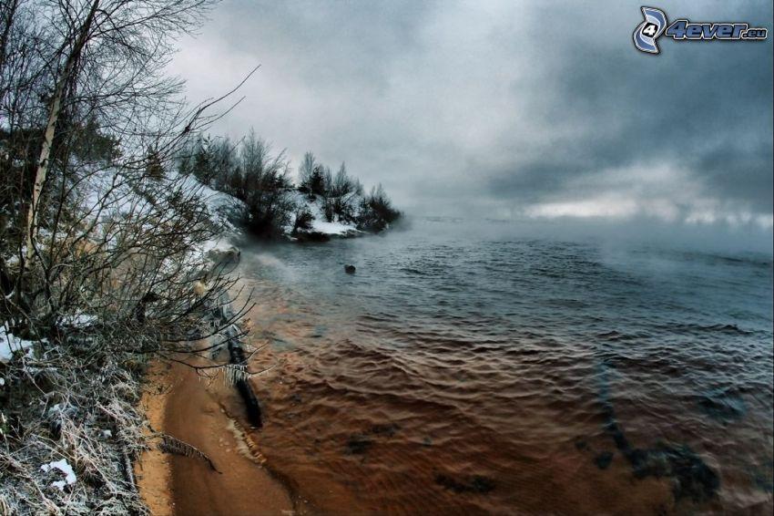 strand, sjö, vinter, dimma
