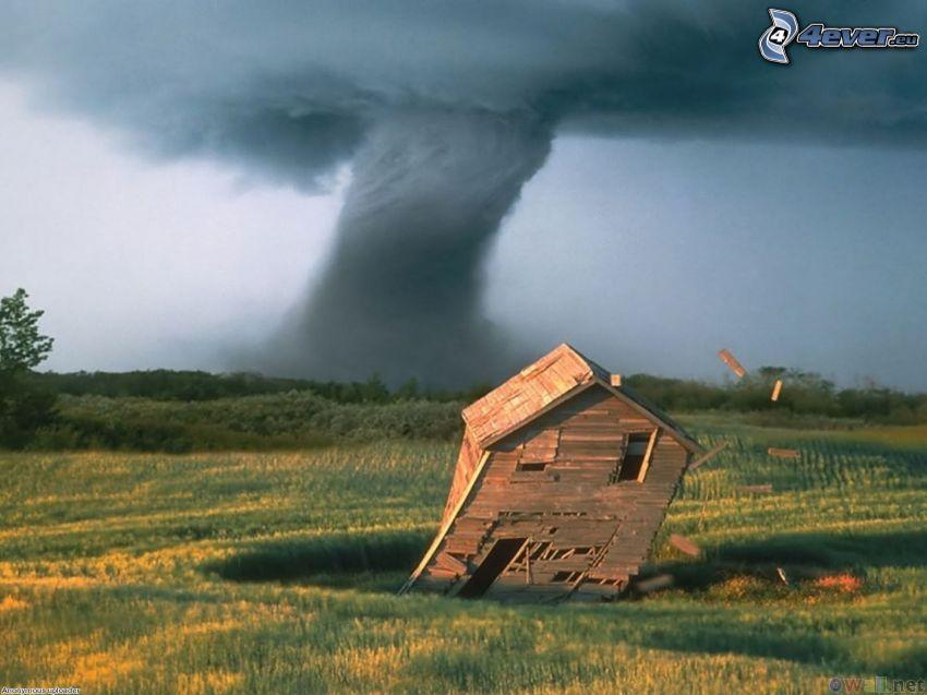 tornado, trähus, destruktion, åker