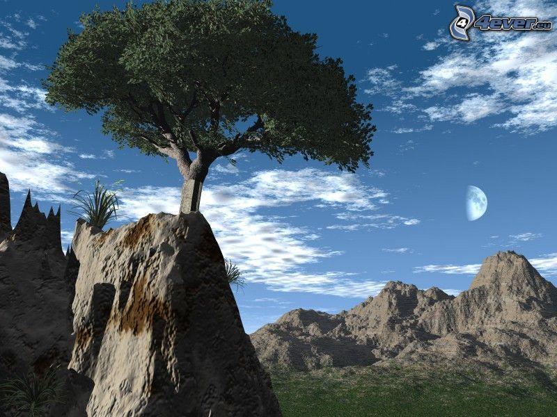träd på klippa, digitalt landskap, måne