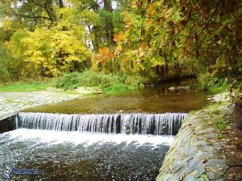 vattenfall, bäck, höst, vadställe