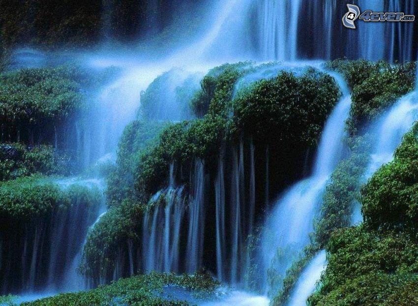 vattenfall, skog, flod