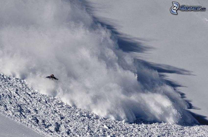 lavin, skidåkare, snö