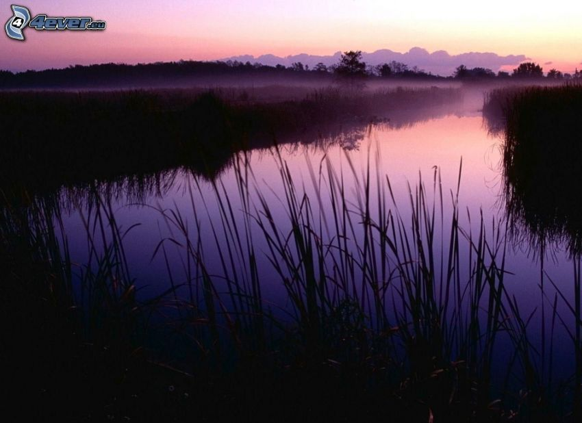 lugn sjö på kvällen