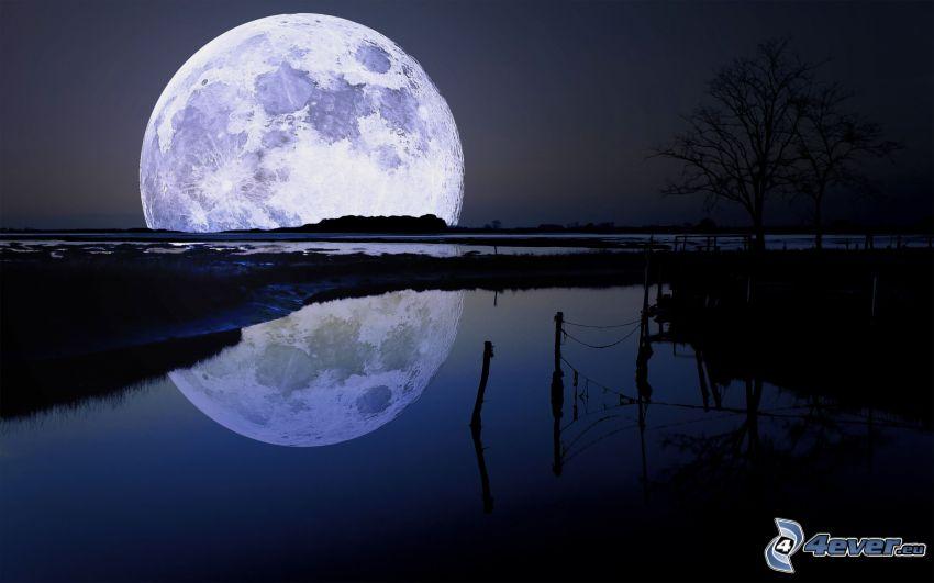 måne, sjö, spegling, staket, natt