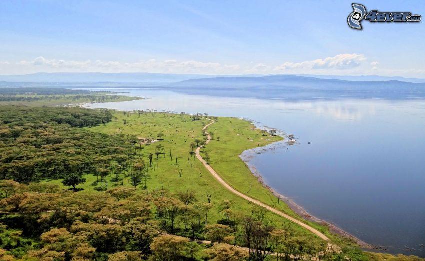 Nakuru, sjö, trottoar, skog