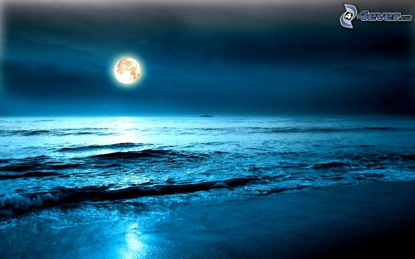 öppet hav, måne, strand, natt