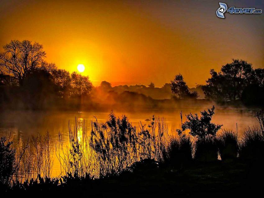 orange solnedgång, flod, silhuett av skog
