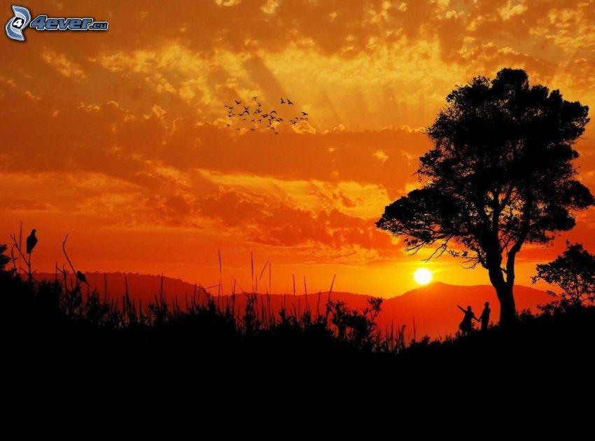 orange solnedgång, siluett av ett träd, silhuett av ett par