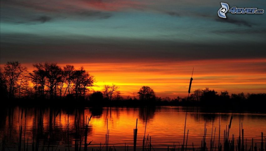 orange solnedgång, sjö