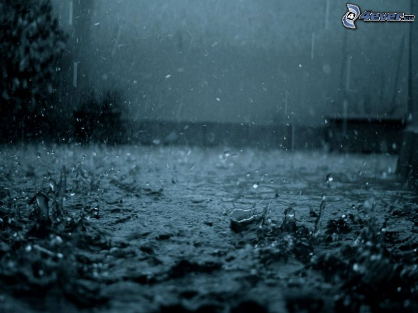 regn, droppar