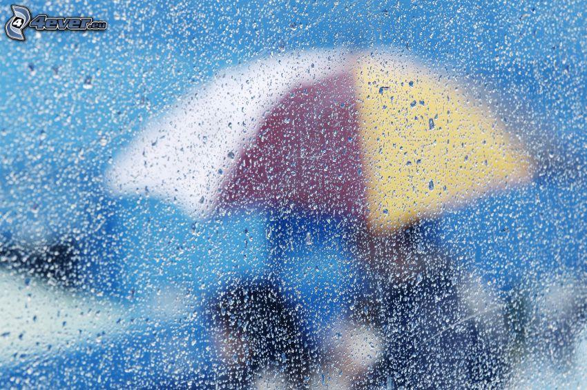 regndroppar, paraply