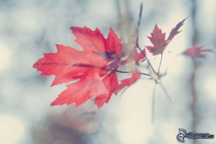rött blad