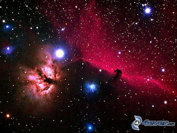 Horsehead Nebula, stjärnor, universum