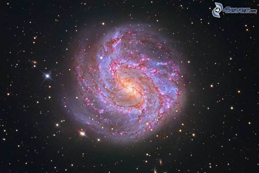 M83, spiralgalax, stjärnor