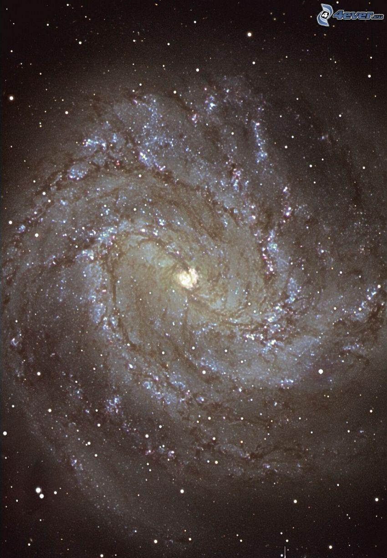 M83, spiralgalax