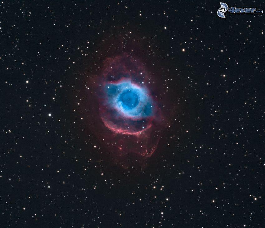 Nebulan Helix, stjärnor