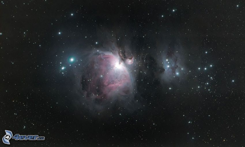 nebulosan Orion, stjärnor