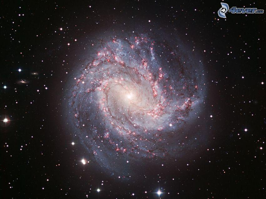 spiralgalax, M83, stjärnor