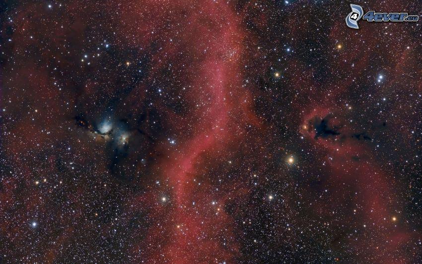 stjärnor, nebulosor