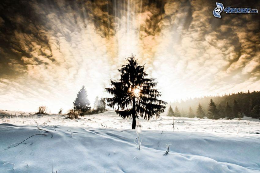 siluett av ett träd, solstrålar, moln, snöig äng