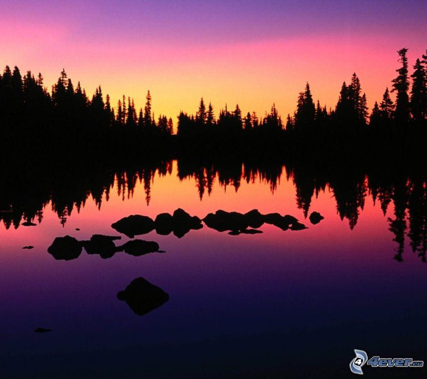 siluetter av träd, sjö, lila himmel