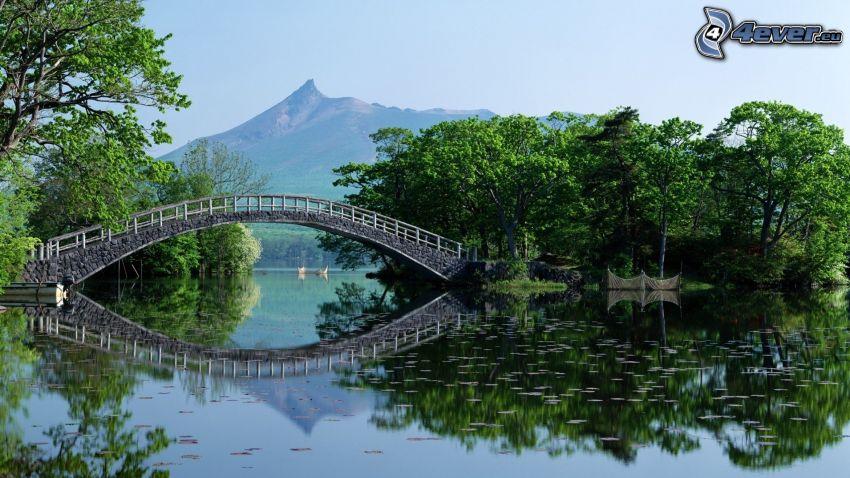 sjö, gångbro, träd, spegling, berg