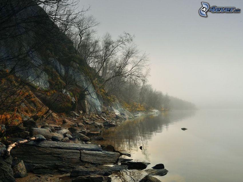 sjö, klippa, dimma