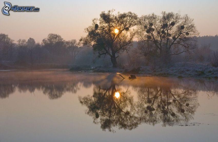 sjö, siluetter av träd, solnedgång, frost, spegling