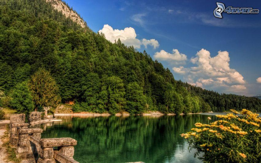 sjö, skog, klippigt berg, HDR