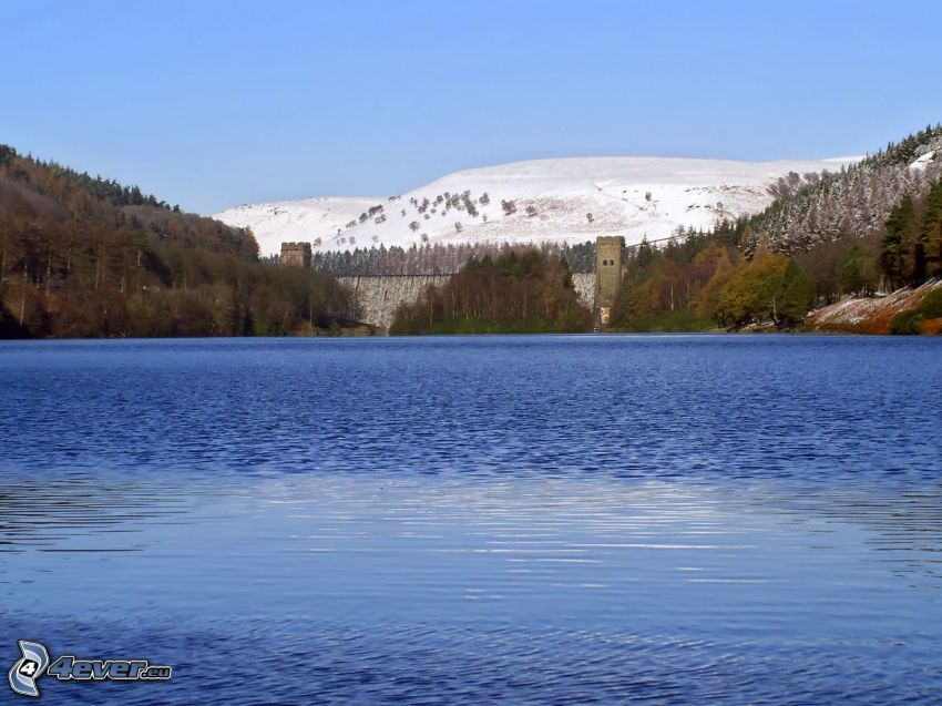 sjö, skog, snöig backe, damm