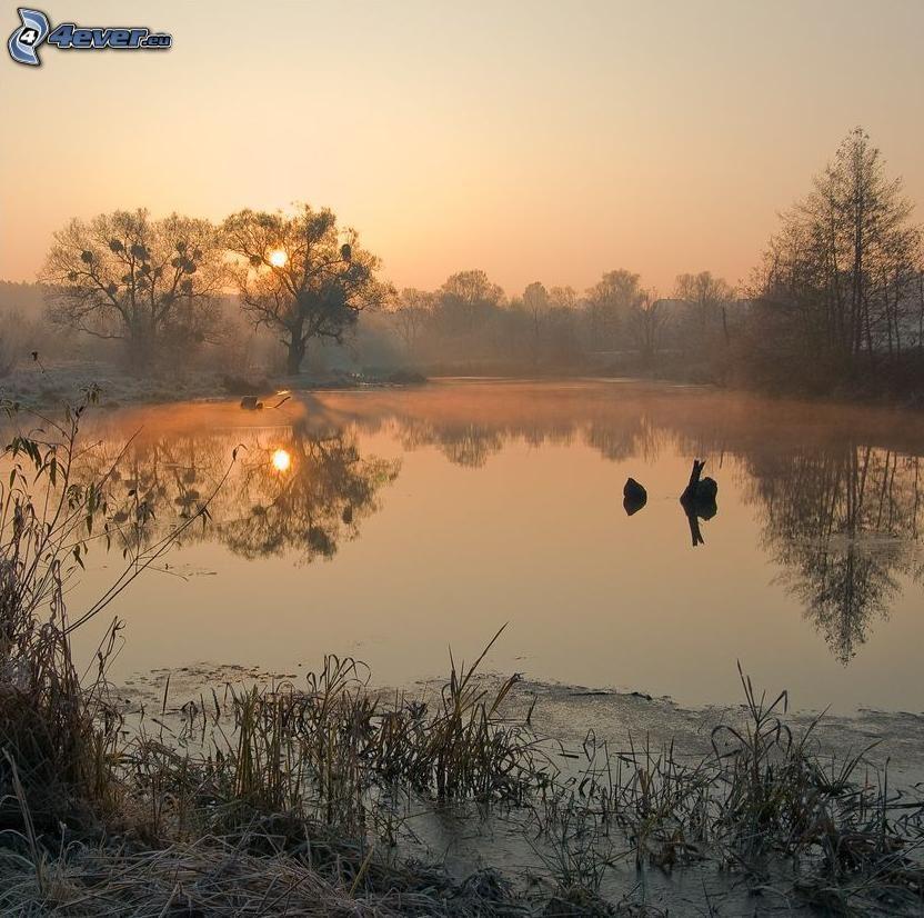 sjö, solnedgång, frost