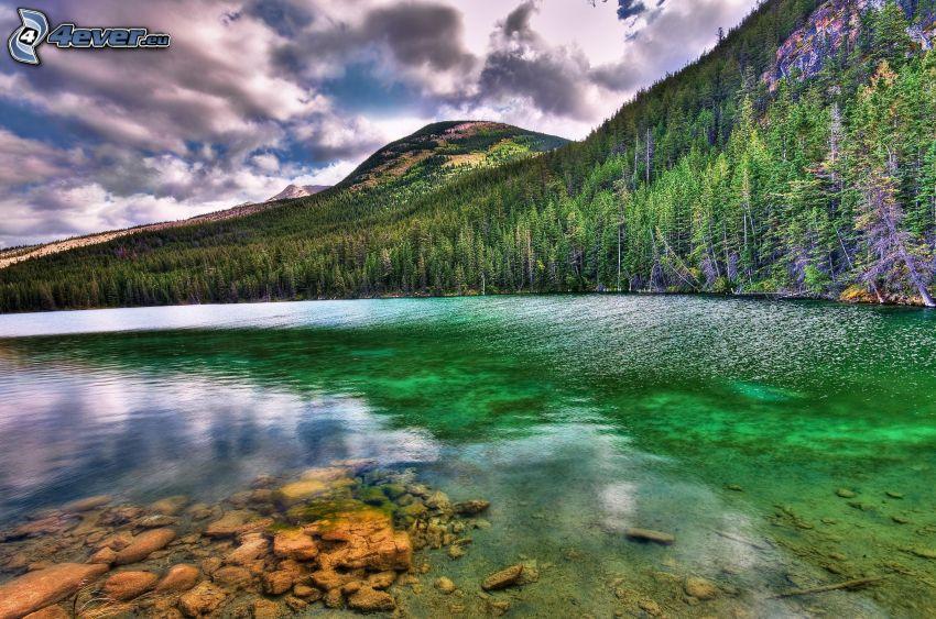 sjö i skogen, kullar, moln, HDR