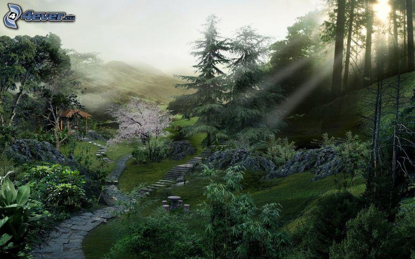 skog, solstrålar, trottoar