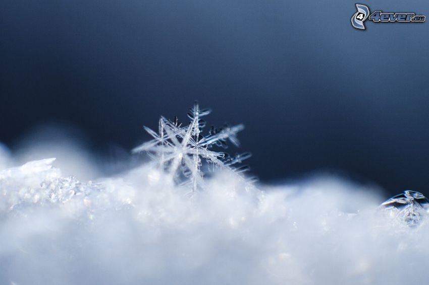 snöflingor, snö