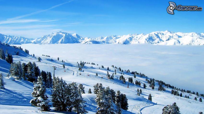 snöig bergskedja, snöigt landskap, backe