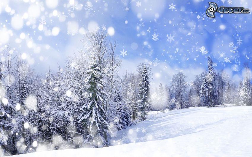 snöig skog, snöflingor, snöfall