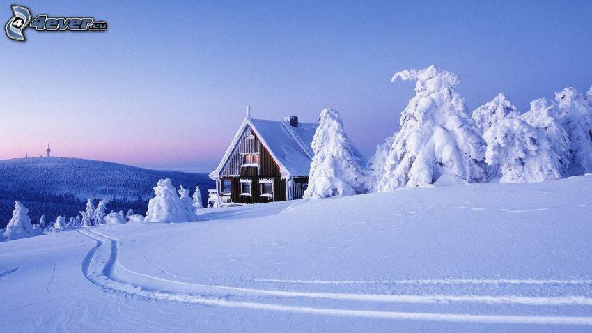 snöig stuga, snöigt landskap, backe, spår i snön
