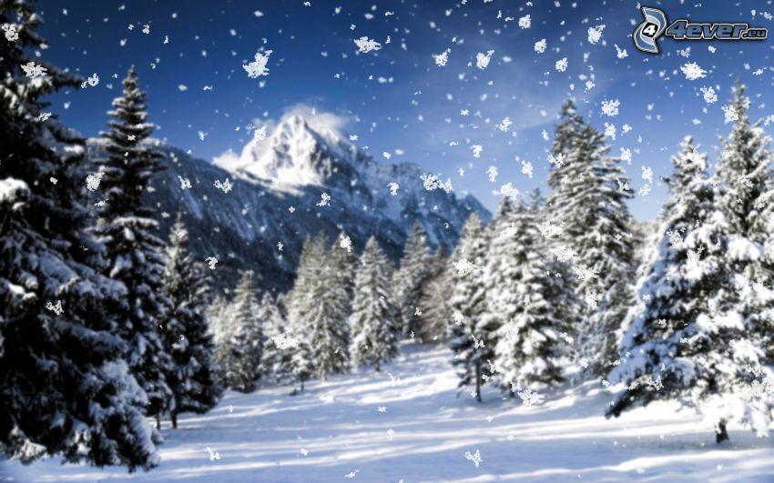 snöigt landskap, snöfall, snöklädda träd, snöigt berg