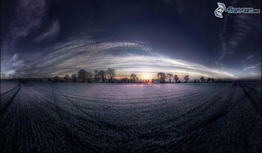 solnedgång bakom fält