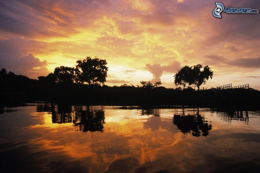 solnedgång bakom sjö, siluetter av träd