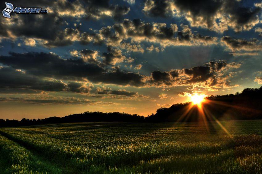 solnedgång över fält, mörka moln