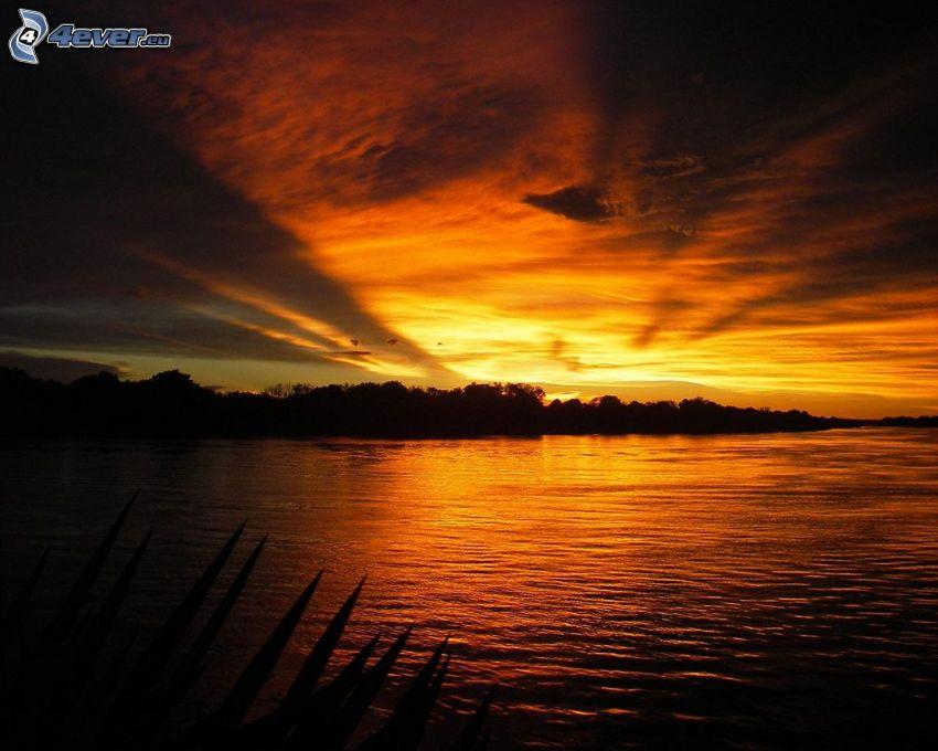 solnedgång över flod, kvällsjus
