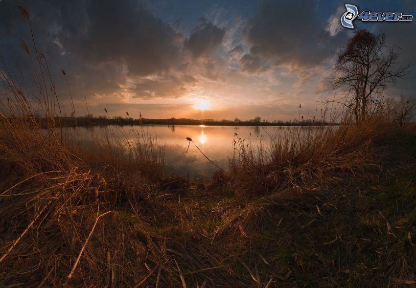 solnedgång över sjö, torrt gräs, moln