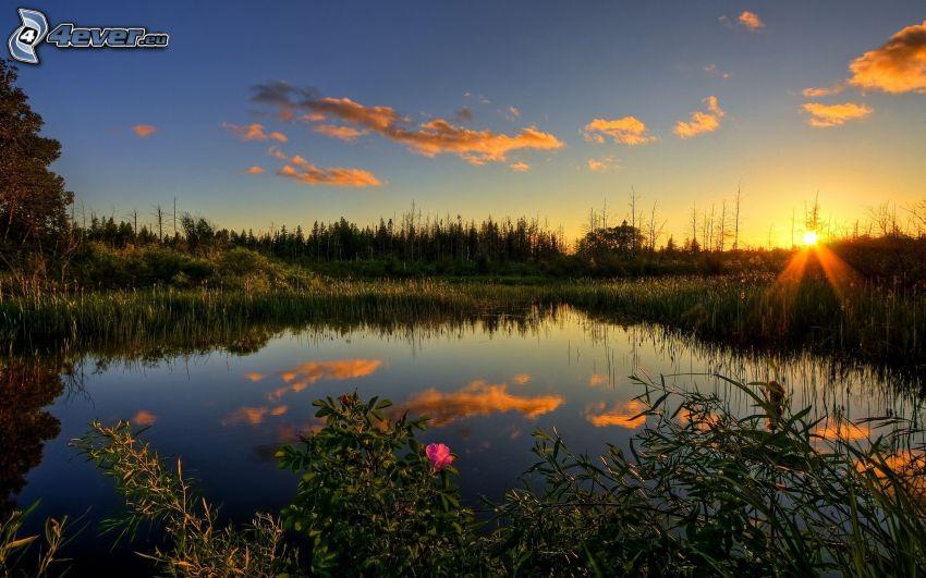 solnedgång över sjö