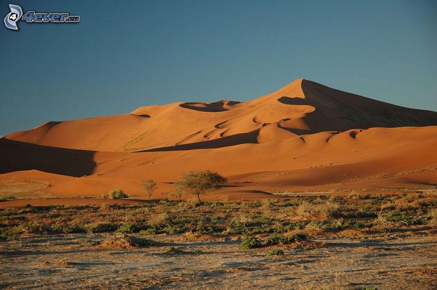 Sossusvlei, sanddyner