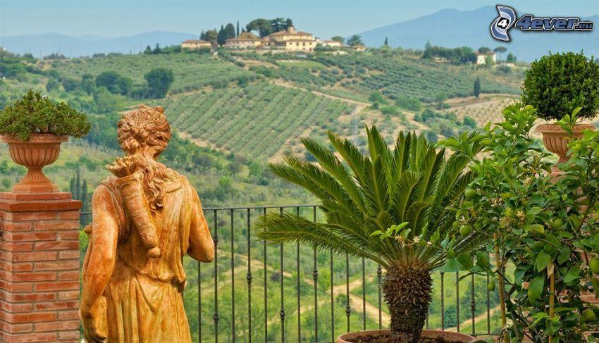staty, palm, balkong, hus på kulle